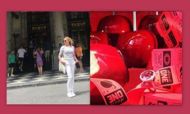 Η φωτο της Στεφανίδου από την Νέα Υόρκη που ξεσήκωσε θύελλα αντιδράσεων και η απίστευτη απάντησή της
