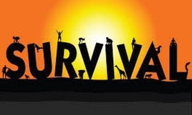 Survival: Τα πρώτα πλάνα από το στίβο μάχης που θα αγωνίζονται οι συμμετέχοντες