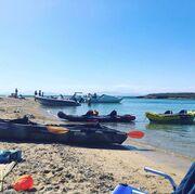 Το ξέσπασμα του Λύρα για το ναυάγιο της Σαλαμίνας: «Αυτή είναι η πόλη που ζω ρε άχρηστοι...» (φωτό)