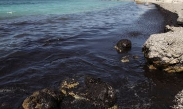 Καθηγητής τοξικολογίας: Εκτός πραγματικότητας τα περί απορρύπανσης σε 20 μέρες