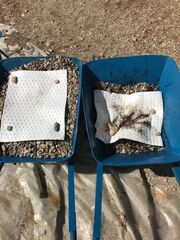 Οικολογική Καταστροφή στο Σαρωνικό:Πρωτοβουλία της Antipollution για πιο αποτελεσματικό καθαρισμό