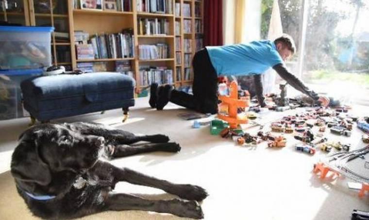 Πώς ένας σκύλος άλλαξε τη ζωή ενός αγοριού με αυτισμό (vds)