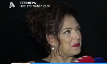 Ο Παπακωνσταντίνου έβαλε τις φωνές την ώρα που η Ράντου μιλούσε στους δημοσιογράφους