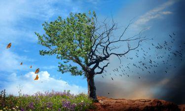 Κλιματική αλλαγή: Οι επιπτώσεις στην υγεία είναι πλέον χειροπιαστές