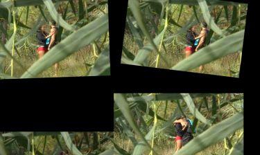 Το «XXX» βίντεο του Survival. Όταν η Πωλίνα και ο Μπερδέσης… φασώνονται (Nassos blog)
