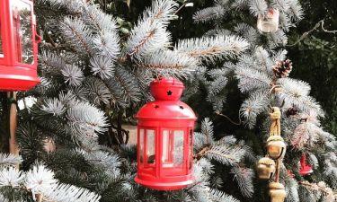 Αυτό είναι το χριστουγεννιάτικο δέντρο που στόλισε για φέτος η…