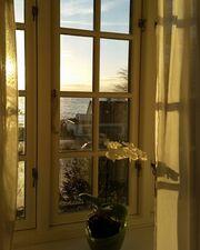 Shaya: Nέες φωτογραφίες από τη ζωή της στη Δανία!