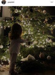 Δείτε την κόρη Ρέμου-Μπόσνιακ να στολίζει το δέντρο τους