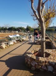 Κατερίνα Παπουτσάκη: Βόλτα με τον γιο της στο Αττικό Ζωολογικό πάρκο