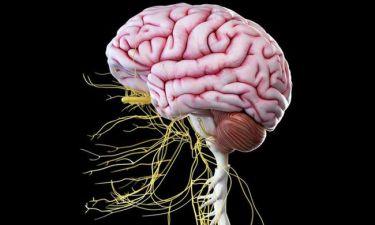 Προσοχή! Τα 8 σημάδια που φανερώνουν νευρολογική βλάβη (εικόνες)