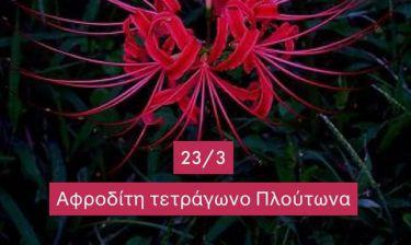 Ζώδια Σήμερα 23/3: Μοιραίοι έρωτες, πάθη και ζήλια