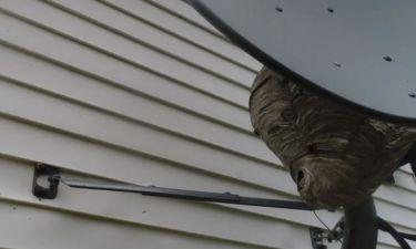 Σήκωσε Drone έξω απ' το σπίτι του. Μόλις ανακάλυψε τι υπήρχε πίσω από τη δορυφορική έπαθε σοκ (vid)