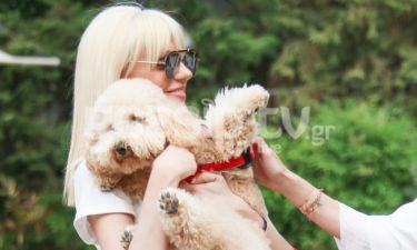 Σταμάτη: Ξετρελάθηκε με το σκυλάκι της φίλης της