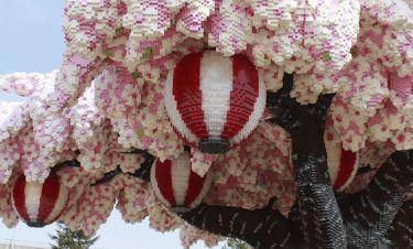 Ρεκόρ Γκίνες: 881.470 τουβλάκια συνθέτουν τη μεγαλύτερη ανθισμένη κερασιά του κόσμου