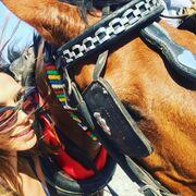 Δείτε την οικογένεια Σρόιτερ να κάνει βόλτες με άμαξα τραγουδώντας το «Καροτσέρη»