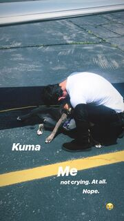 Justin Theroux: Έσωσε από ευθανασία αδέσποτο σκυλάκι