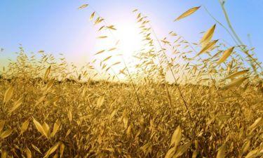 Πράγματα που δε γνωρίζεις για το Θερινό Ηλιοστάσιο