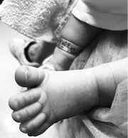 Σταύρος Σβήγκος - Έλενα Αϊβαλή: Η πρώτη φωτογραφία του 35 ημερών γιου τους!
