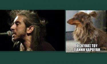 Τρελό γέλιο στα social media: Αυτός είναι ο σκύλος του Γιάννη Χαρούλη