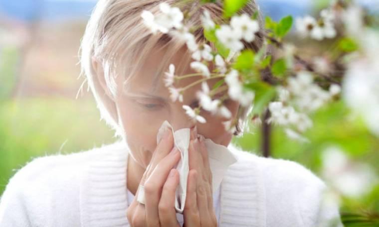 Εποχικές αλλεργίες: Φυσικές λύσεις για ανακούφιση των συμπτωμάτων (εικόνες)