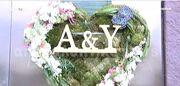 Αντώνης Ρέμος: Δείτε τις προετοιμασίες του γαμπρού πριν τον γάμο και το στολισμό του σπιτιού του