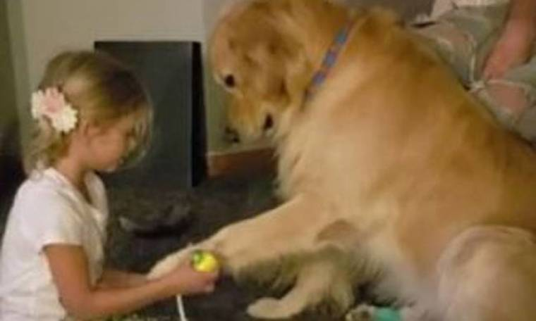 Η 6χρονη που θέλει να γίνει κτηνίατρος και… ο πρώτος της «ασθενής» (vid)