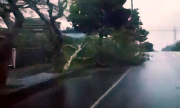 Ποιος κυκλώνας Ζορμπάς; Δείτε τι καταστροφές προκαλεί ο τυφώνας Trami στη Νότια Ιαπωνία!