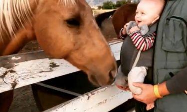 Όταν ένα μωράκι συναντά ένα… άλογο!