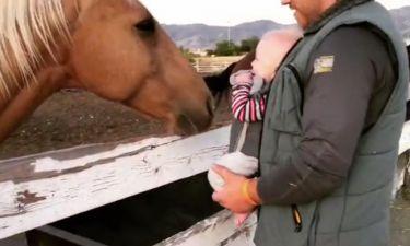 Απολαυστικό βίντεο: Το μωρό ξεκαρδίζεται με τα παιχνίδια του αλόγου!