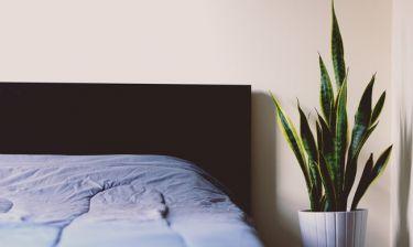 Ιδέες διακόσμησης για το πιο minimal φοιτητικό υπνοδωμάτιο