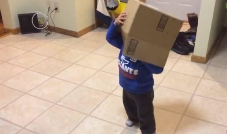 Δείτε τι κάνει ένας αξιολάτρευτος μπόμπιρας όταν βρίσκει ένα χαρτόκουτο