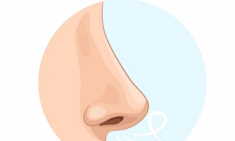 Τι φανερώνει το σχήμα της μύτης σου για τον χαρακτήρα σου;