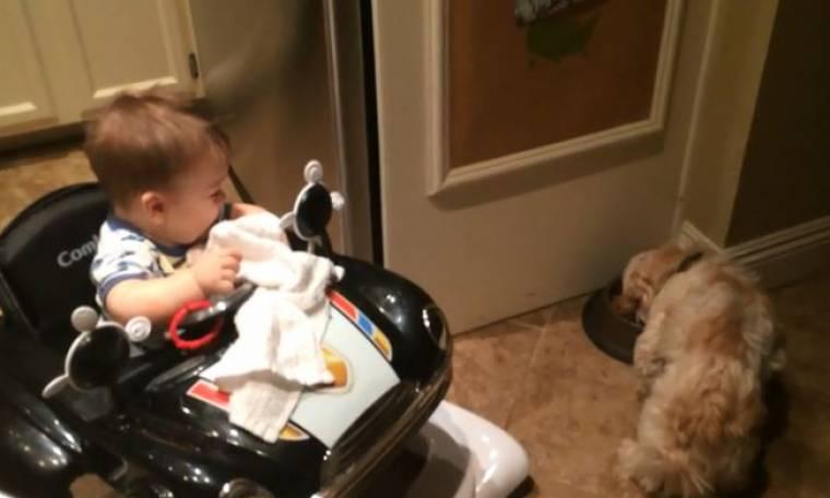 Ξεκαρδιστικό βίντεο: Ο σκύλος τρώει και το μωρό λιώνει από τα γέλια