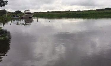Είναι σίγουρο πως δεν θα κολυμπήσετε ποτέ σε αυτό το ποτάμι! Δείτε γιατί!