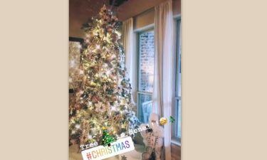 Εντυπωσιακό το χριστουγεννιάτικο δέντρο γνωστής Ελληνίδας τραγουδίστριας