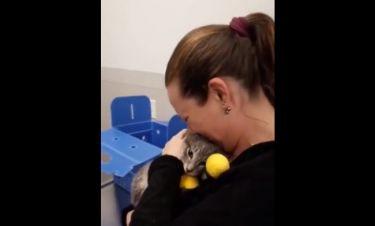 Η συγκλονιστική στιγμή που μία γυναίκα συναντά την γάτα της, την οποία είχε χάσει σε φωτιά!