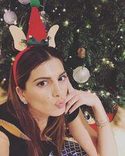 Σταματίνα Τσιμτσιλή: Έτσι στόλισε το σπίτι της φέτος για τα Χριστούγεννα (Photos)