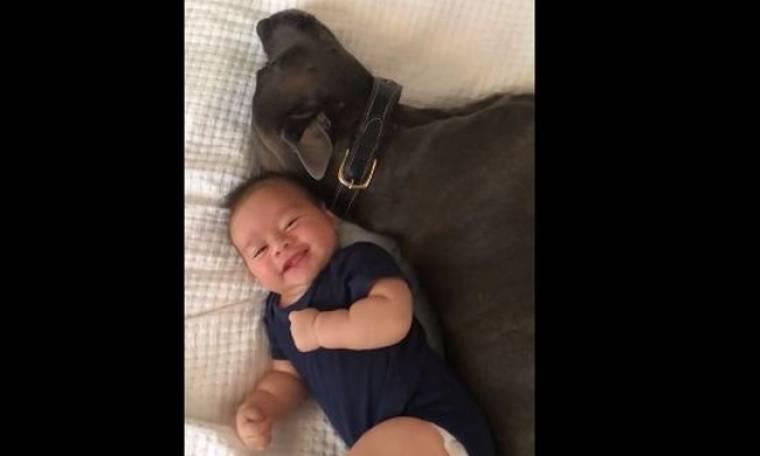 Η απίστευτη φιλία αυτού του μωρού με το pit bull! (Video)