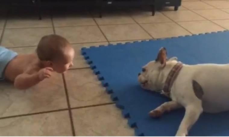 Το σκυλάκι κάνει τα πάντα για γελάσει το μωρό