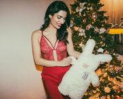 Η Τόνια Σωτηροπούλου στόλισε το δέντρο της με εσώρουχα κι «έριξε» το Instagram!