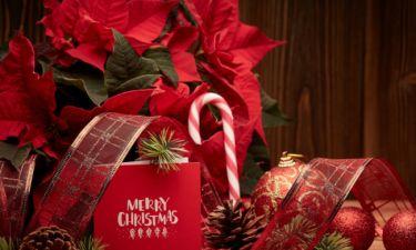 Ξέρουμε πώς σου αρέσει να περνάς τα Χριστούγεννα