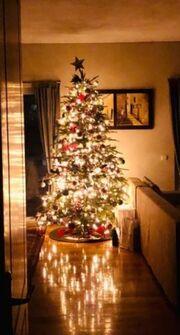 Το εντυπωσιακό χριστουγεννιάτικο δέντρο του Αλέξανδρου Παρθένη και της Βιβής Κωστοπούλου!