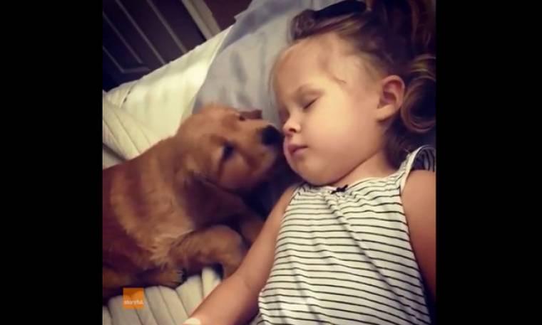 Το σκυλάκι απλά προσπαθεί να ξυπνήσει το κοριτσάκι