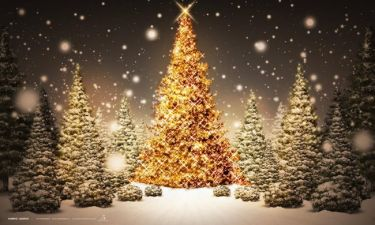 Το θαύμα των Χριστουγέννων (Αληθινό Περιστατικό)