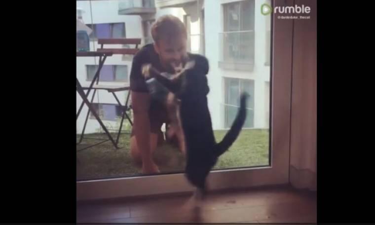 Πώς μία γάτα βοηθά το αφεντικό της να καθαρίσει τα τζάμια!