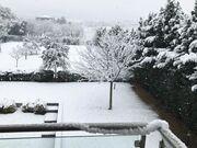 Χριστίνα Αλούπη: Η φωτό που της έστειλε ο μπαμπάς της από τη χιονισμένη Θεσσαλονίκη