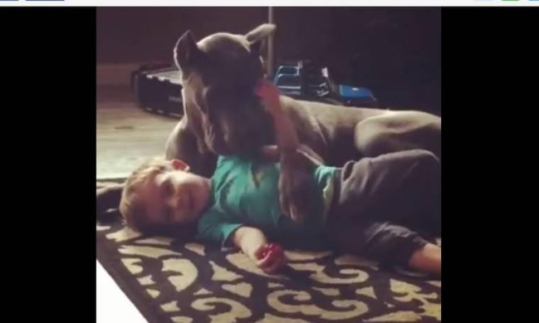 Θα λιώσετε! Τα παιχνίδια ενός μικρού με τον σκύλο του στο πάτωμα!