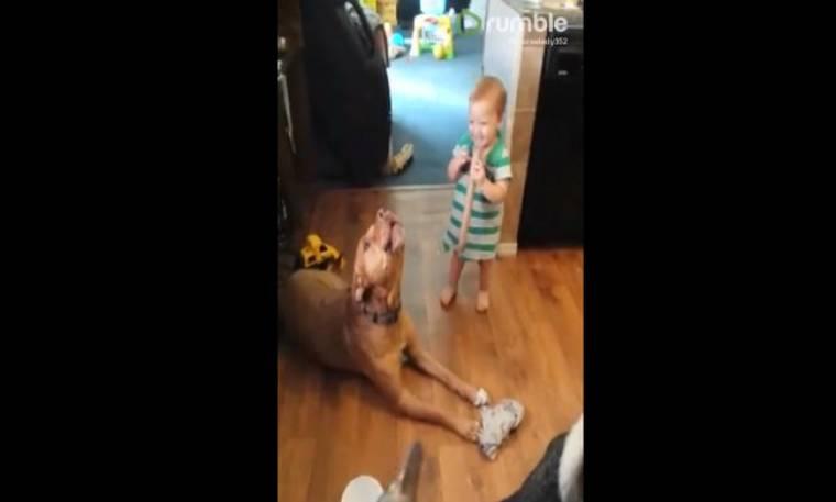 Η απίστευτη κραυγή ενός σκύλου! (vid)