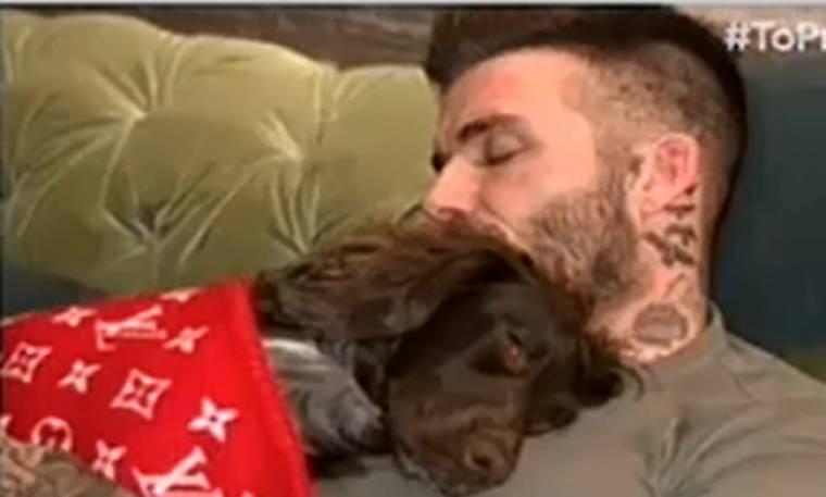 Δεν φαντάζεστε πόσο κοστίζει η κουβέρτα του σκύλου του David Bekcham