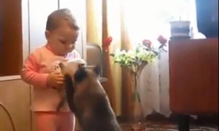 H Μάνα είναι μάνα ακόμα κι αν είναι…γάτα!